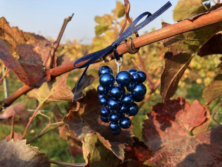 Weintraube blau